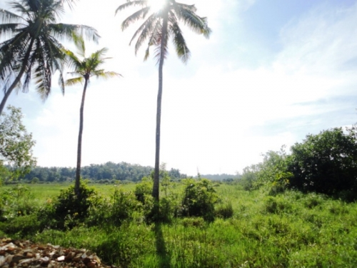Picturesque property in Induruwa