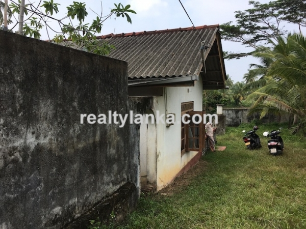 Property with a paddy view