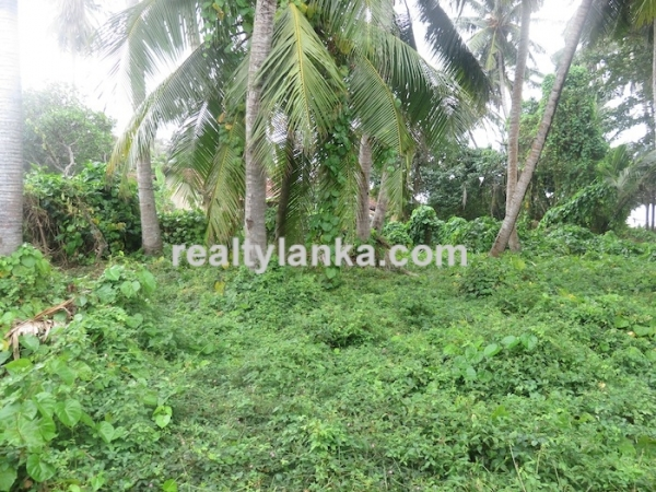 40m Beach Front Property