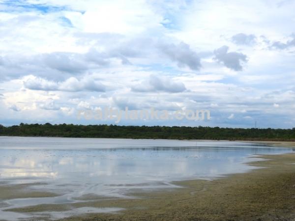 Bare Land Facing the Lagoon