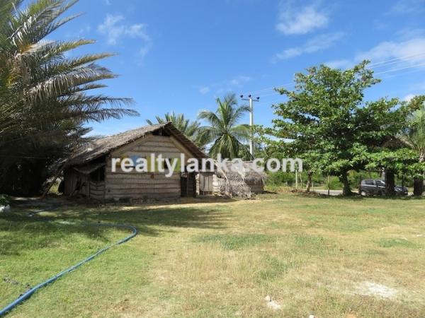 43 Acres Propety in Kalpitiya Lagoon