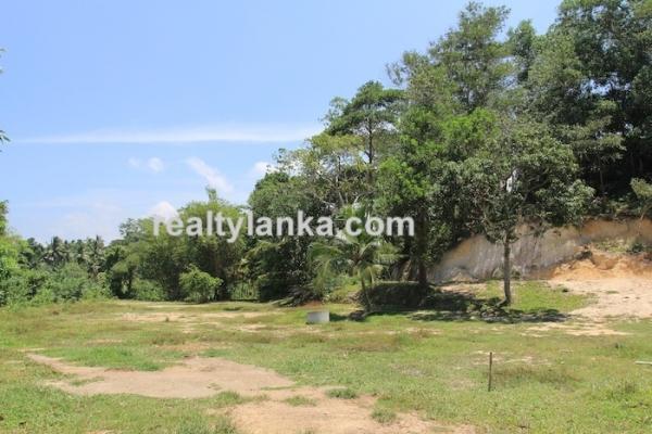 Bareland In Ginthota