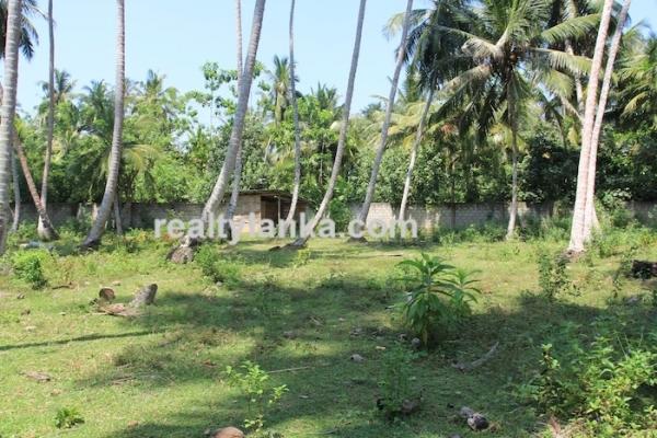 Bareland In Habaraduwa