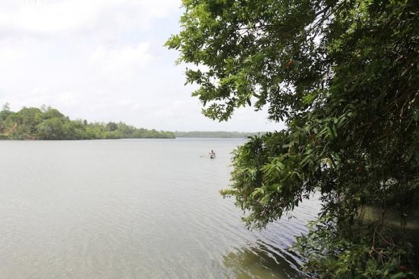 Two Cottages Facing Koggala Lake