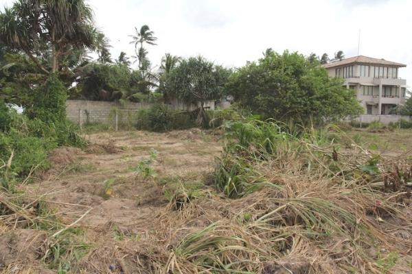 Rare Piece of Land In Palana