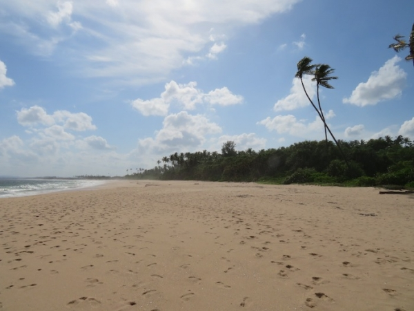 7.5 Acres Beach Property In Rekawa
