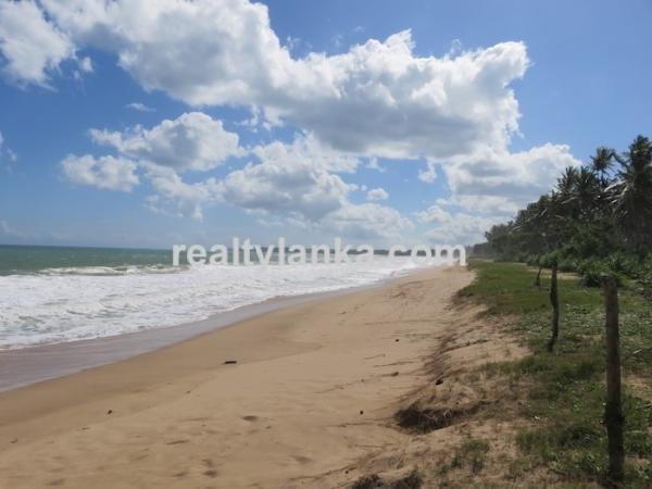 Beachfront Property In Rakawa