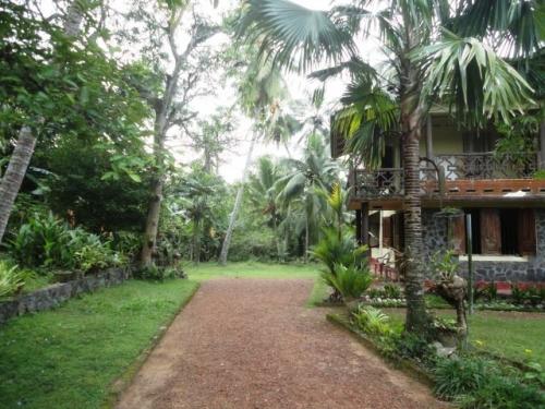 Quaint 3 Bedroom Cottage in Kosgoda