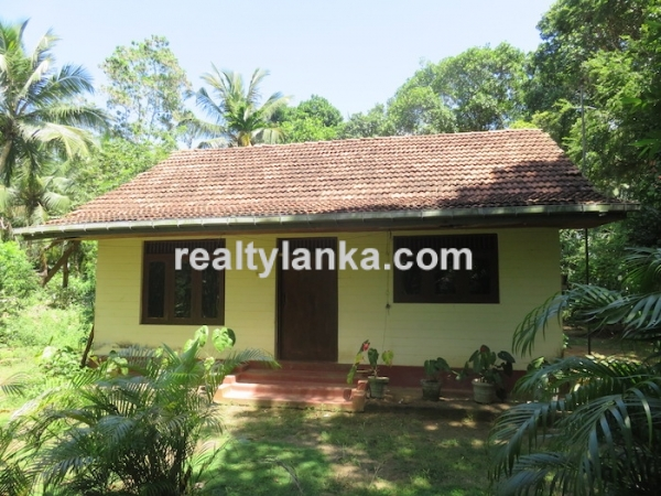 A Small Colonial House With Paddy View