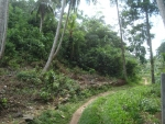 Land close  to Thalpe tourist beach -