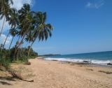 Large portion of beachfront land BB 39
