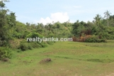 Property with a Relaxing View Over Paady AI 08