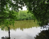Peaceful Relaxing River Front Property GI 151