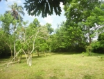 Stuning beach front property in Mawella -